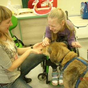Finał zbiórki darów dla zwierząt