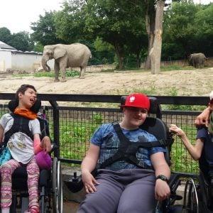Wycieczka do Miejskiego Ogrodu Zoologicznego